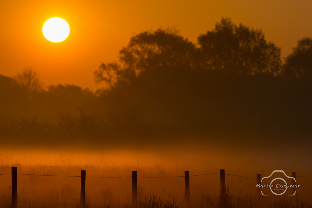 Misty Sunrise in Suffolk